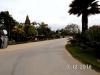 Thai16072