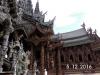 Thai16176