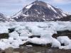 Lavvande...-masser af isflager er gaaet paa land