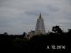 Thai16261